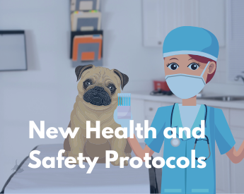 Health and Safety new protocols